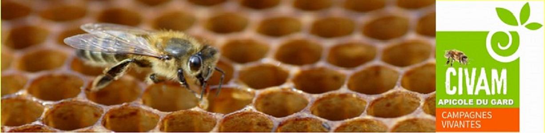 Civam apicole du Gard